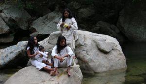 indiani Kogi
