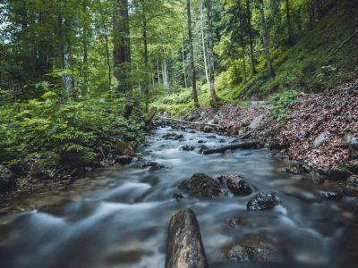 Pouť k pramenům řeky Chrudimky