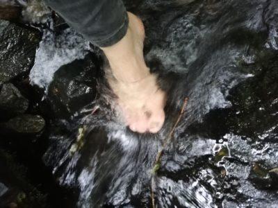 Pouť k pramenům řeky Jihlavy